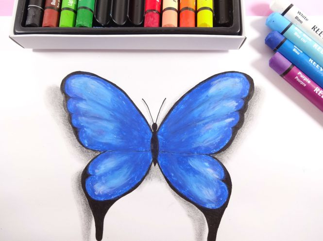 desenho-borboleta-azul-01