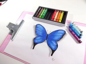 desenho-borboleta-azul-02